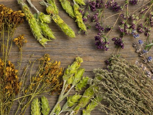Piatto di laici medicinali naturali spezie ed erbe aromatiche Foto Gratuite