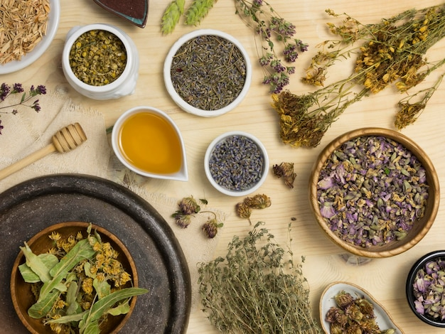 Flat lay of natural medicinal spices and herbs Free Photo