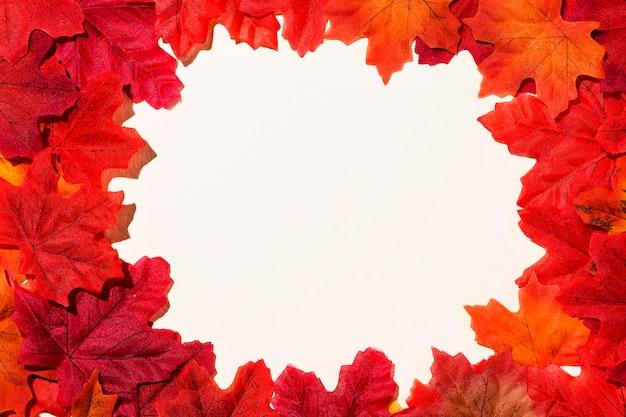 秋の葉のフラットレイアウトフレーム 無料写真