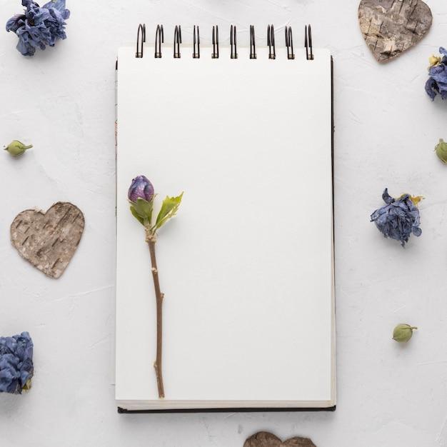 Плоская планировка красивой концепции дня святого валентина Premium Фотографии