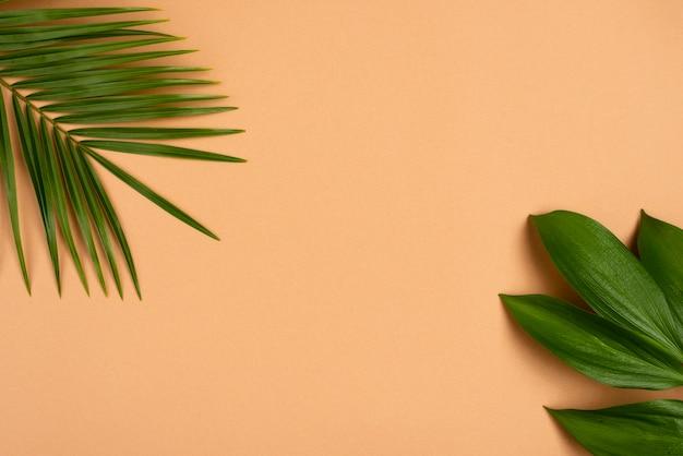 Плоская планировка листьев различных растений с копией пространства Бесплатные Фотографии