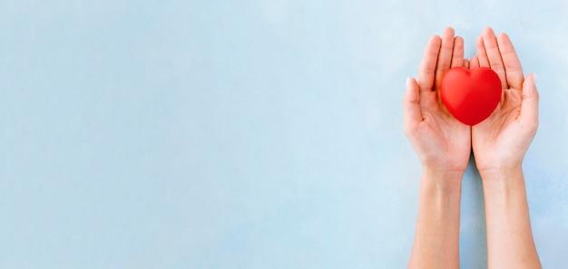 ケアとコピースペースでハートの形を保持している手のフラットレイアウト Premium写真