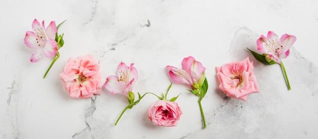 春のバラと大理石の背景を持つ蘭のフラットレイアウト Premium写真