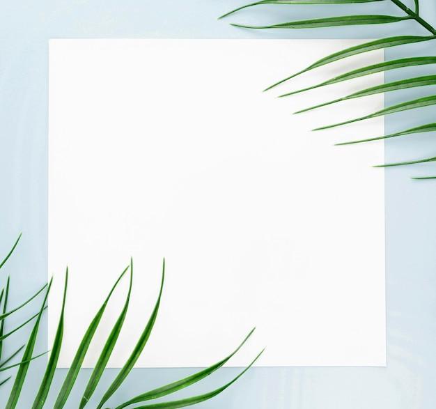 コピースペースを持つ薄い葉のフラットレイアウト 無料写真