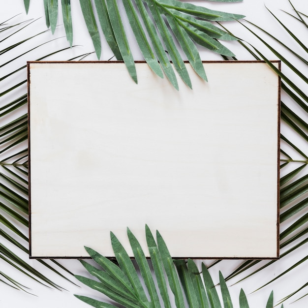 Flat lay of paper card template with leaves Free Photo