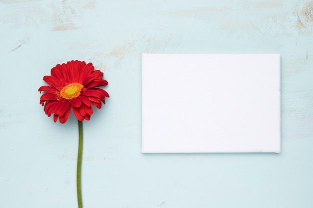 Flat lay of paper template with nature concept Free Photo