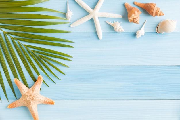 Flat lay photo seashell and starfish on blue wood table Premium Photo