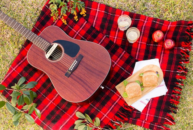 Flat lay picnic with acoustic guitar Free Photo