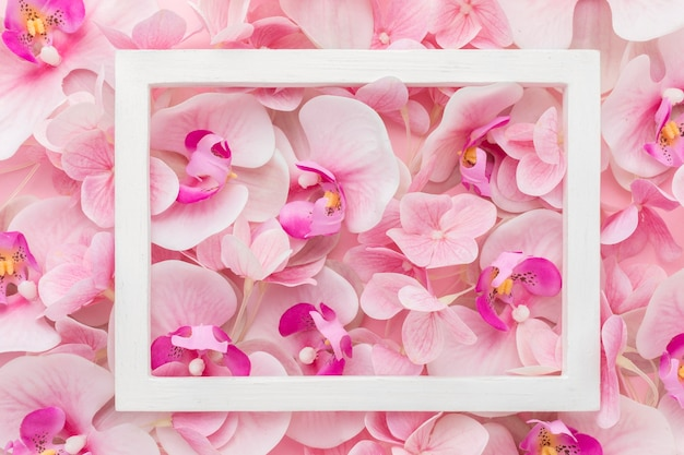 Flat lay pink orchids and hydrangea with frame Premium Photo