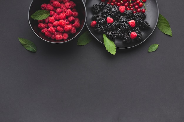 Flat-lay plate and bowl of fresh berries with copyspace Free Photo