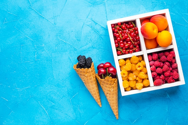 Flat-lay plate of fresh berries and fruits with copyspace Free Photo