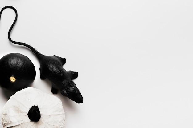 Плоские лежал тыквы и крысы с копией пространства Бесплатные Фотографии