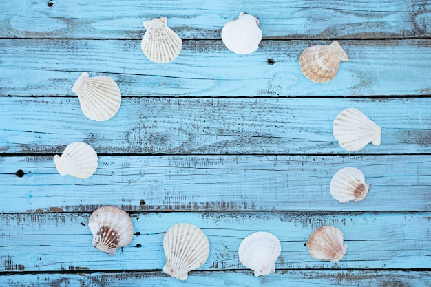 Flat lay round seashells frame on wooden board Free Photo