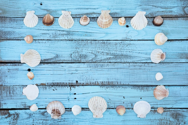 Flat lay seashells frame on wooden board Free Photo