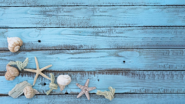 Flat lay seashells on wooden board Free Photo