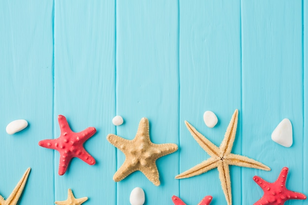 Flat lay starfish and seashells on wooden board with copy space Free Photo