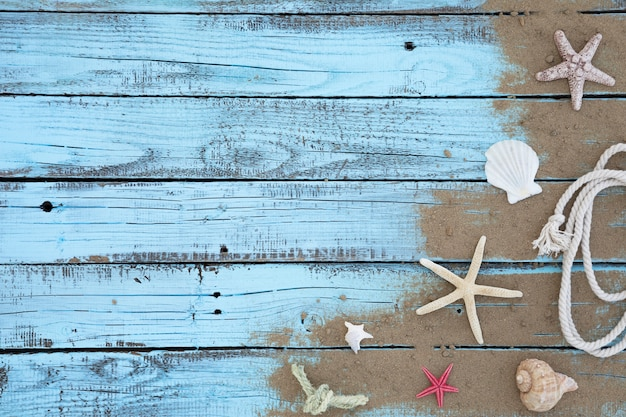 Flat lay starfishes and seashells wooden board Free Photo