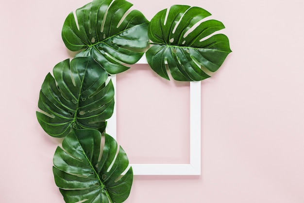 Flat lay of tropical leaves with copyspace Free Photo