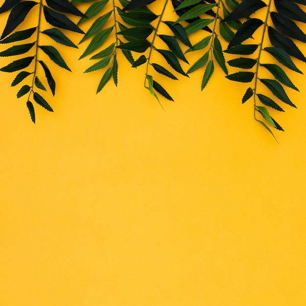 Flat lay tropical palm leaves on yellow copy space background. summer concept Free Photo