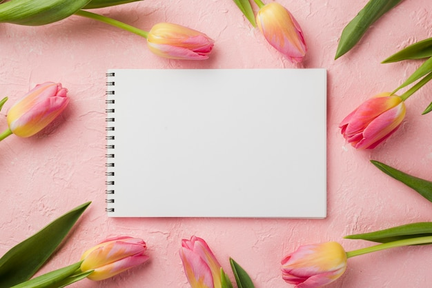 Flat lay tulips frame with notebook Free Photo