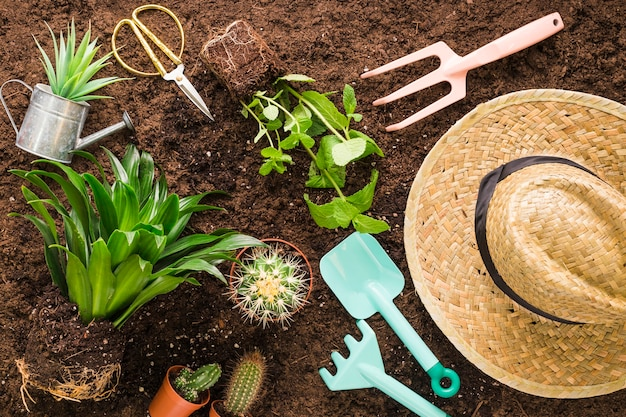 Flat lay of various garden objects Free Photo