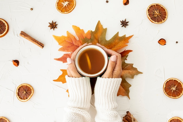 Flat lay woman holding a cup of tea close-up Free Photo