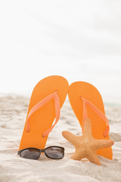 Flip Flop, Sunglasses And Starfish In Sand Photo  Free -6570