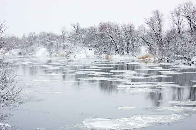 Floating grandfather on the winter river, winter landscape, spring floods Premium Photo