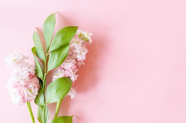 Цветочная композиция на хворостине fuscus и цветок matthiola на розовой бумажной предпосылке eith экземпляра spce. нежная открытка на день матери, день рождения или женский день. Premium Фотографии
