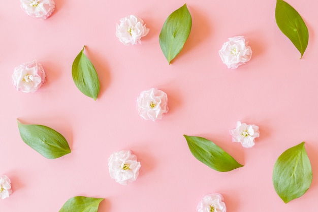 Цветочная композиция на листьях рускуса и цветах матиолы на розовом фоне бумаги Premium Фотографии