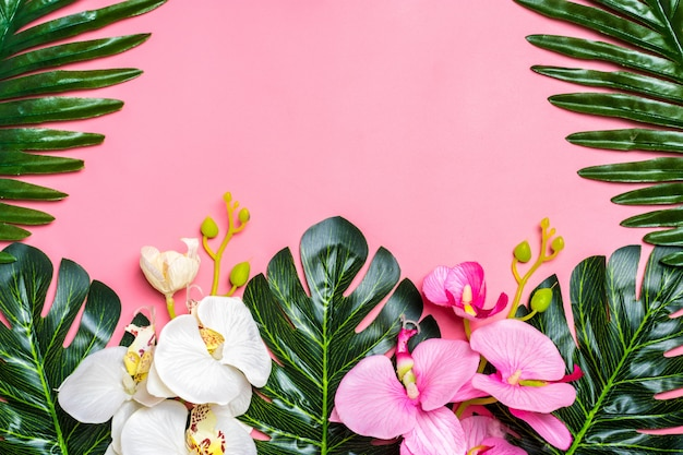 Floral background of tropical tree leaves monstera and palm, orchid flower with a space fo Premium Photo