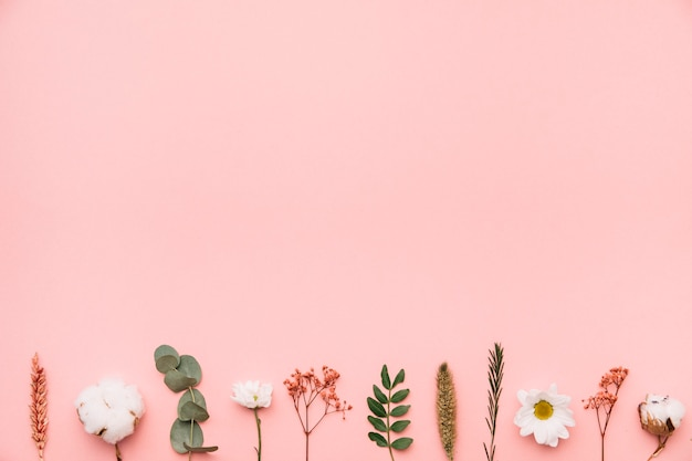 Floral background with botanical elements on bottom Premium Photo