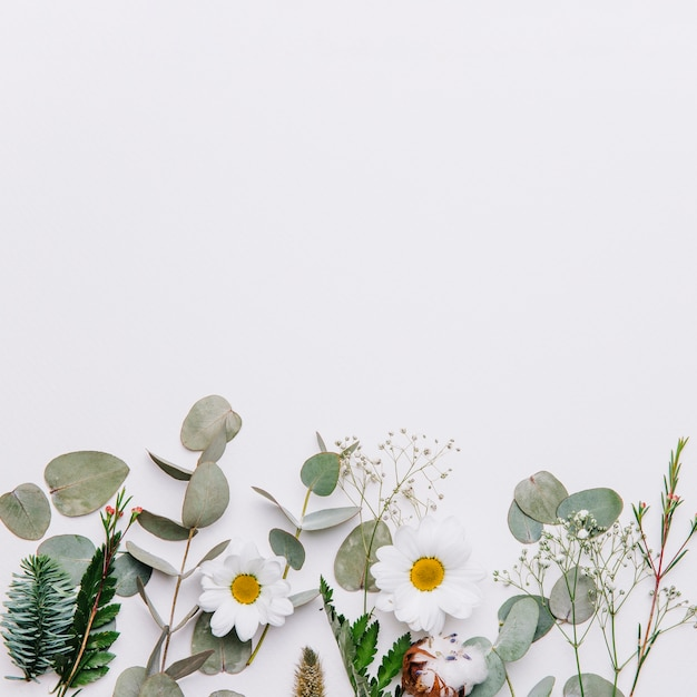 Floral background with space on top Premium Photo