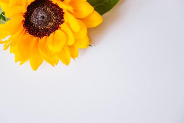 ひまわりの上に花のコンポジション Premium写真