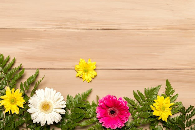 Floral flat lay of gerberas and ferns Free Photo