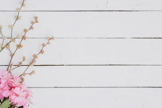 Floral pattern of light pink branches on wood background. Free Photo