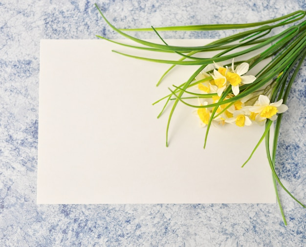Floral pattern made of green leaves on blue and white background. flat lay, top view Premium Photo