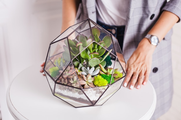 Florarium, composition of succulents, stone, sand and glass, element of interior,  home decor, glass terarium Premium Photo