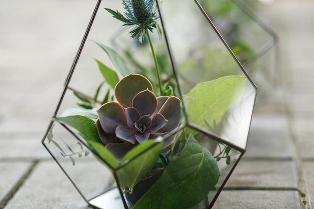 Florarium with fresh succulent flowers. event fresh flowers decoration Premium Photo