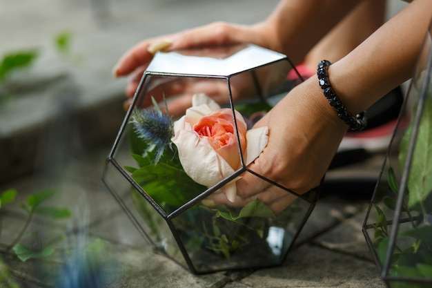 Florarium with fresh succulent and rose flowers. florist workflow Premium Photo