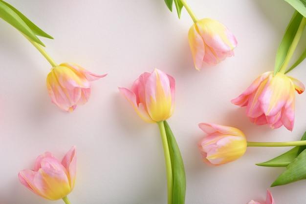 白い背景の上のピンクのチューリップのフラワーアレンジメント、チューリップの背景の概念 Premium写真