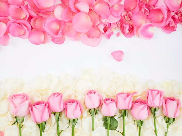 Flower frame made of pink roses Premium Photo