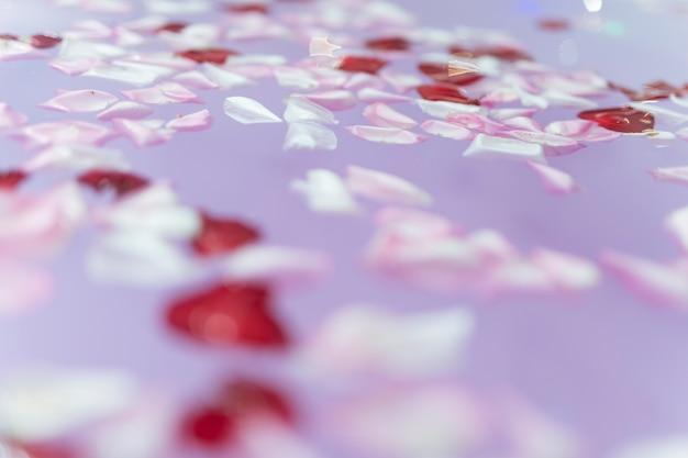 Flower petals on purple water Free Photo
