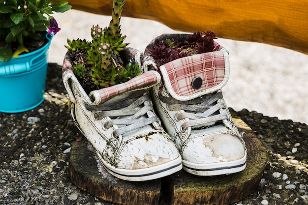 A flower pot of old and used slippers with flowers Premium Photo