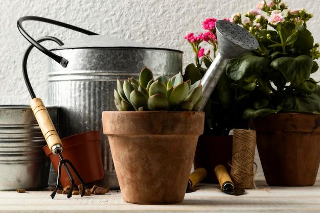 植木鉢とじょうろ 無料写真