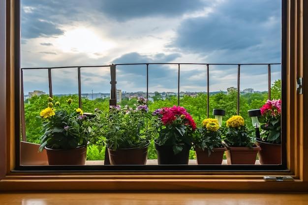 曇り空の背景を持つバルコニーの窓の外に植木鉢。 Premium写真