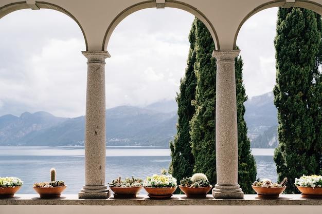 Цветочные горшки с суккулентами в арках с колоннами с видом на озеро комо в италии. Premium Фотографии