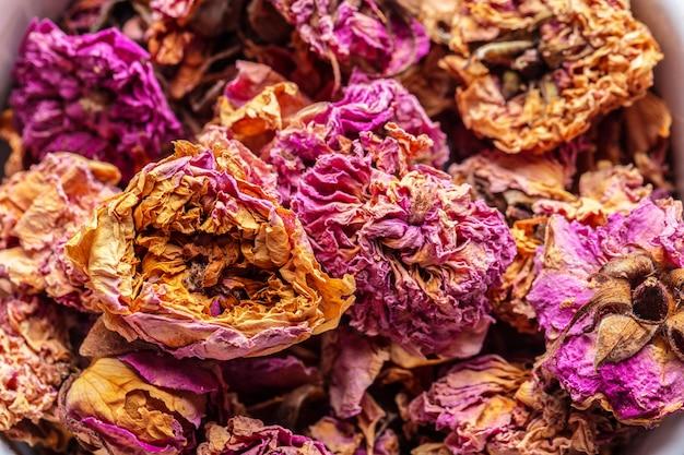 Flower tea rose buds Premium Photo