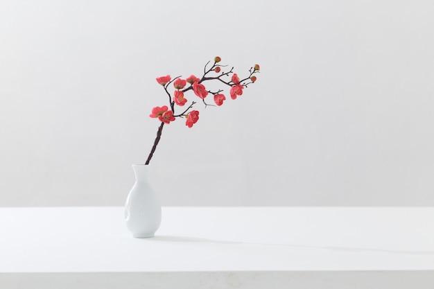 白い背景の上の白い花瓶にピンクの桜の枝を開花 Premium写真