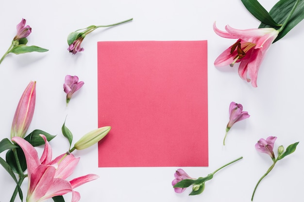 Flowers background Free Photo